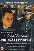 Image of Good Evening, Mr. Wallenberg
