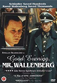 God afton, Herr Wallenberg (1990) Poster - Movie Forum, Cast, Reviews