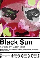 Image of Black Sun