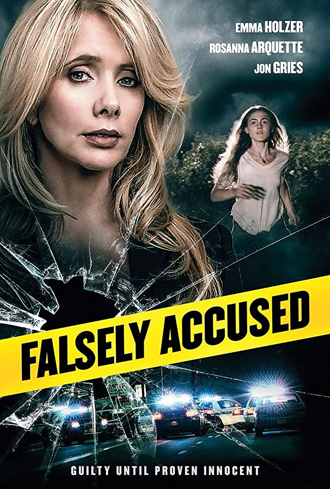 Falsely Accused [2016][DVDR][NTSC]