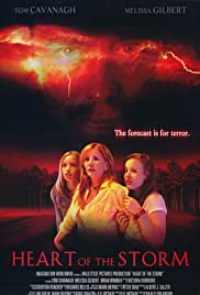 Heart of the Storm (2004) Poster - Movie Forum, Cast, Reviews