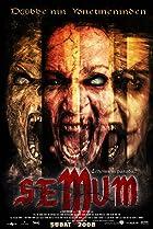 Image of Semum