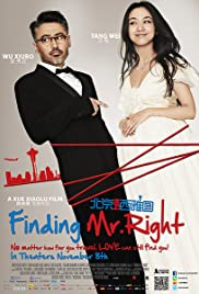 Finding Mr. Right Poster