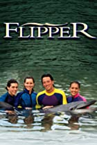 Image of Flipper