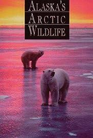 Alaska's Arctic Wildlife Poster