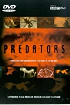 Image of Predators