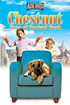 Image of Chestnut: Hero of Central Park