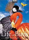"""""""The Life of Birds"""""""