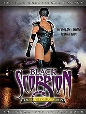 Black Scorpion - Season 1 (2001) poster
