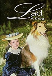 Lad: A Dog Poster