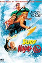 Image of Surf Ninjas
