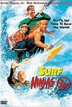 Image of Surf Ninjas