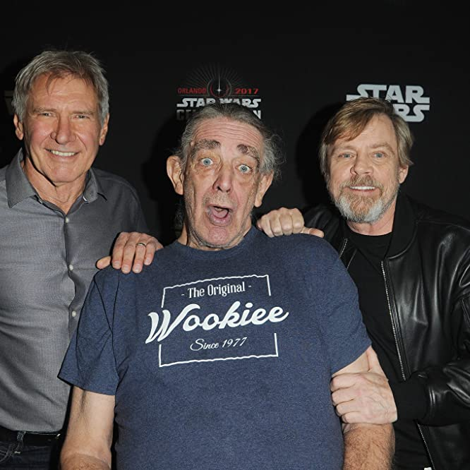 Harrison Ford, Mark Hamill, and Peter Mayhew