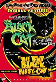The Black Cat (1966) Poster - Movie Forum, Cast, Reviews