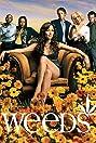 Weeds (2005) Poster