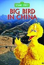 Image of Big Bird in China