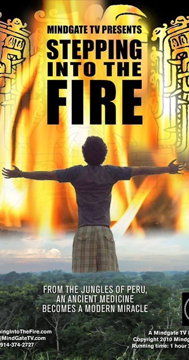 Stepping Into: Stepping Into The Fire (2011)