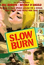 Image of Slow Burn