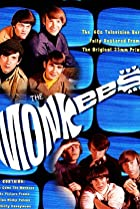 Image of The Monkees