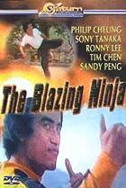 Image of The Blazing Ninja