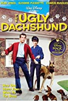 The Ugly Dachshund (1966) Poster