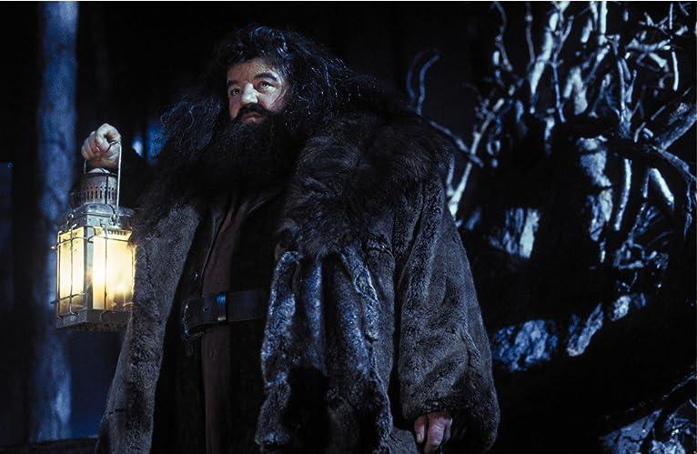 ハグリッド「ハリー、おまえは魔法使いなんだ」