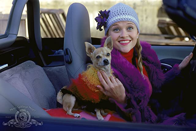 Reese Witherspoon in Legally Blonde (2001)