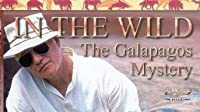 The Galapagos Islands with Richard Dreyfuss