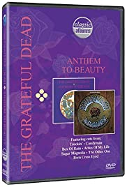 The Grateful Dead: Anthem to Beauty Poster