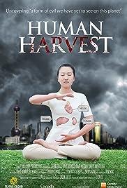 Human Harvest Poster