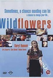 Wildflowers(1999) Poster - Movie Forum, Cast, Reviews