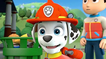 gage munroe paw patrol wwwpixsharkcom images