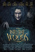 Image of Into the Woods