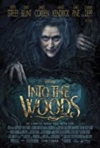 Primary image for Into the Woods