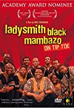 On Tiptoe: The Music of Ladysmith Black Mambazo