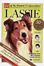 Primary image for Lassie and the Swamp Girl