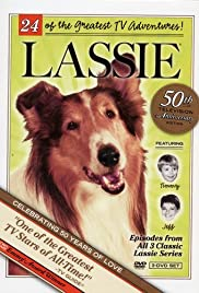 Look Homeward, Lassie: Part 3 Poster
