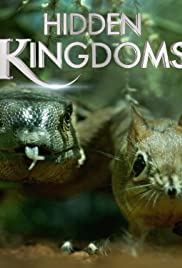Hidden Kingdoms Poster - TV Show Forum, Cast, Reviews