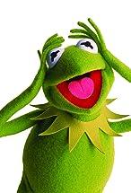 Kermit the Frog's primary photo