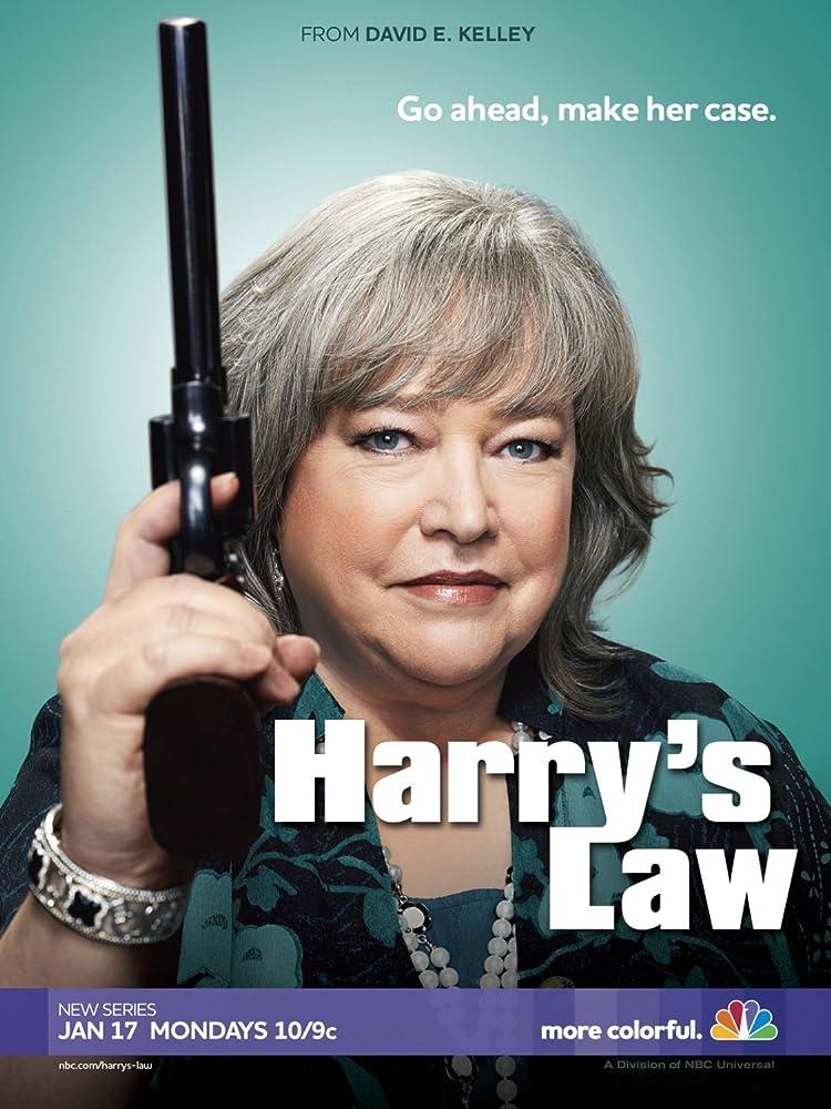 律政俏师太第一至二季/全集Harry's Law迅雷下载