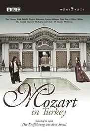 Mozart in Turkey Poster