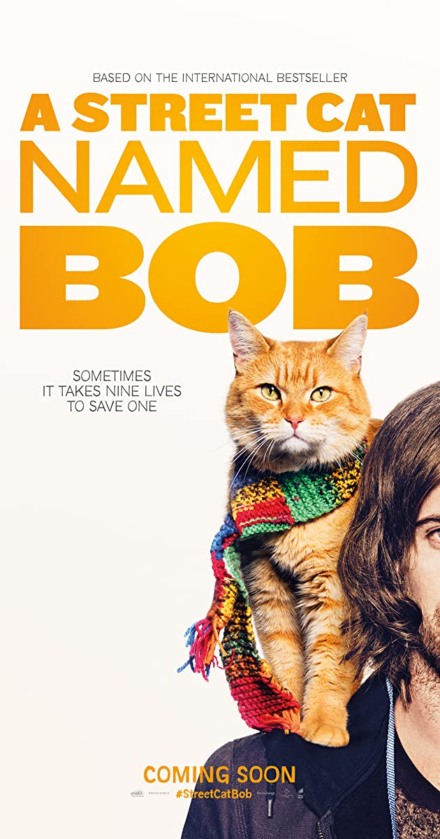 Benamis katinas vardu Bobas