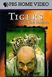 Tigers with Bob Hoskins Poster