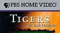 Tigers with Bob Hoskins