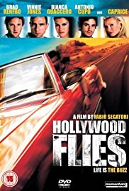 Hollywood Flies Poster