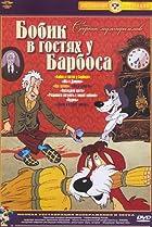 Image of Bobik v gostyakh u Barbosa