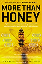 Image of More Than Honey