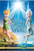 Image of Secret of the Wings
