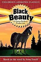 Image of Black Beauty