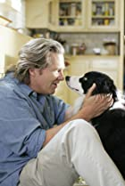Image of A Dog Year
